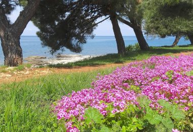horvát tenger tavasz